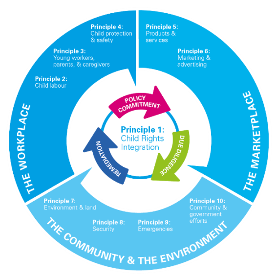 the impact of 3r principles to Learn about the 3 rs — reduce, reuse, and recycle — and how the practice of employing them can help preserve the environment.